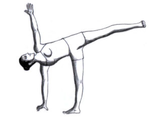 yoga asanas postures with pictures pdf in hindi